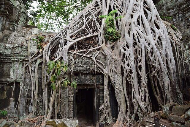 camboya vuelos 5* 8 noches 496 euros