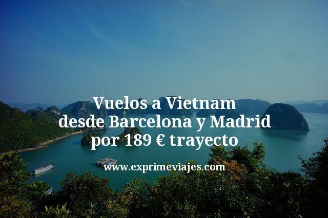 VUELOS A VIETNAM DESDE MADRID Y BARCELONA POR 189€ TRAYECTO