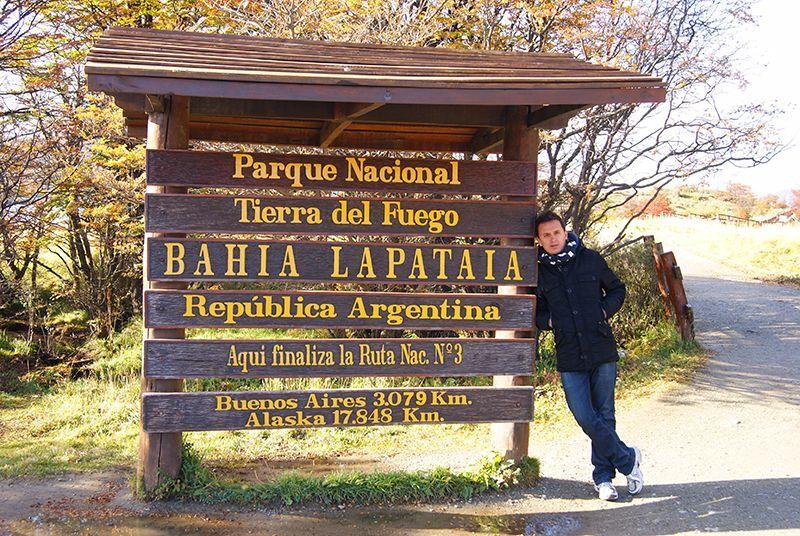 Galo en Tierra del Fuego, Argentina