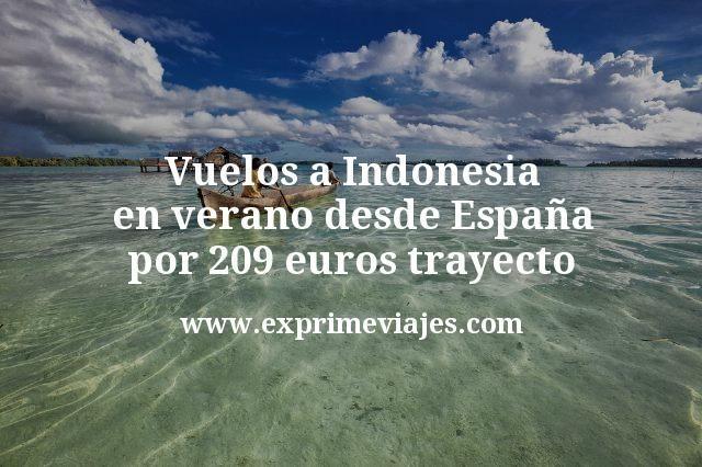 ¡Wow! Vuelos a Indonesia en verano desde España por 209€ trayecto