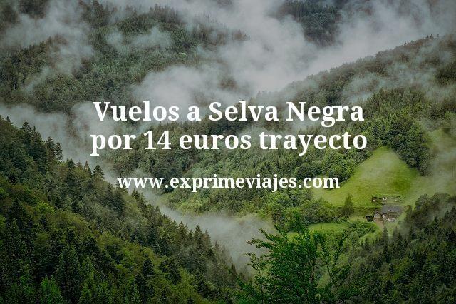 ¡Wow! Vuelos a Selva Negra por 14euros trayecto