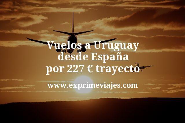 ¡Wow! Vuelos a Uruguay desde España por 227euros trayecto