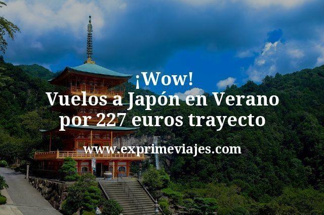 ¡Wow! Vuelos a Japón en Verano por 227euros