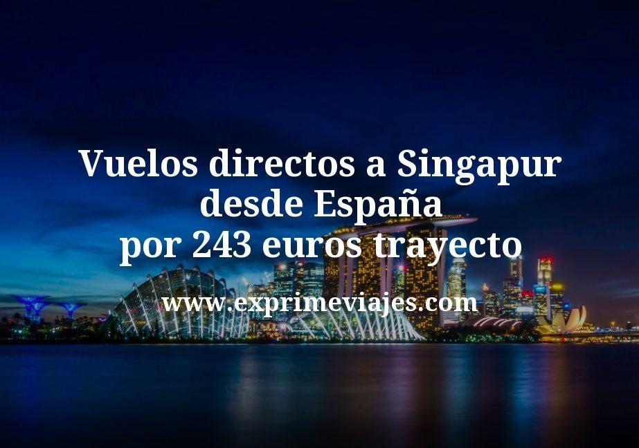 Vuelos directos a Singapur desde España por 243euros trayecto