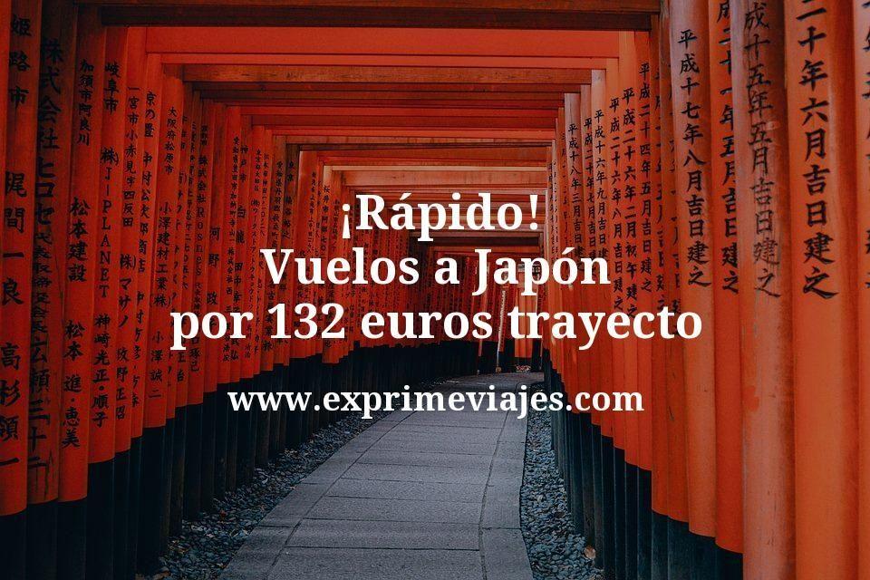 ¡Rápido! Vuelos a Japón por 132euros trayecto