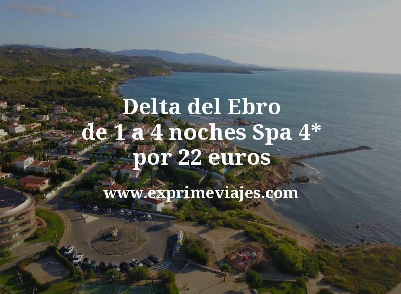 Delta del Ebro: de 1 a 4 noches Spa 4* por 22€ p.p/noche