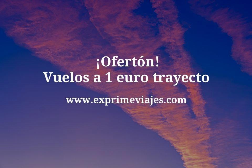 ¡Ofertón! Vuelos a 1 euro trayecto (para megavoloteas)