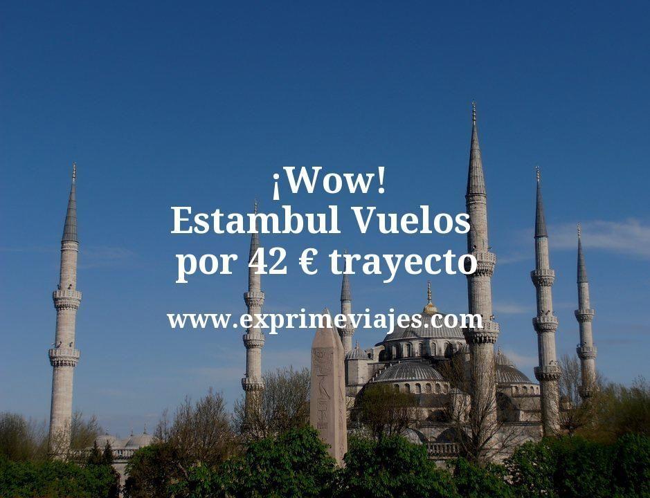 ¡Wow! Estambul: Vuelos por 42euros trayecto