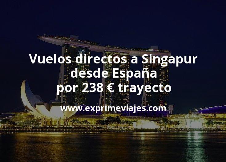 Vuelos directos a Singapur desde España por 238euros trayecto