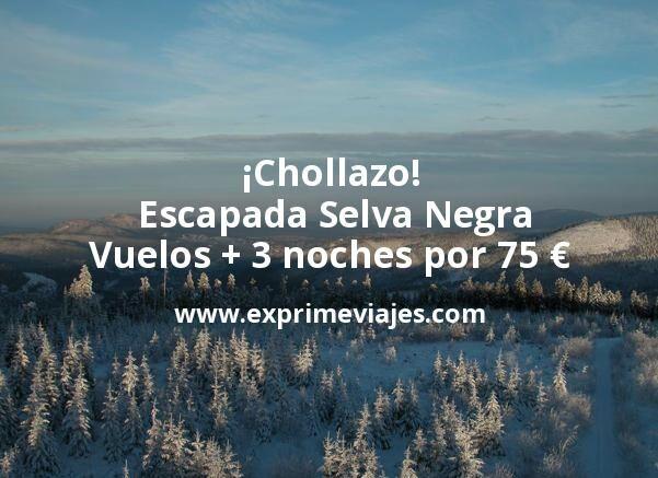 ¡Chollazo! Escapada Selva Negra: Vuelos + 3 noches por 75euros