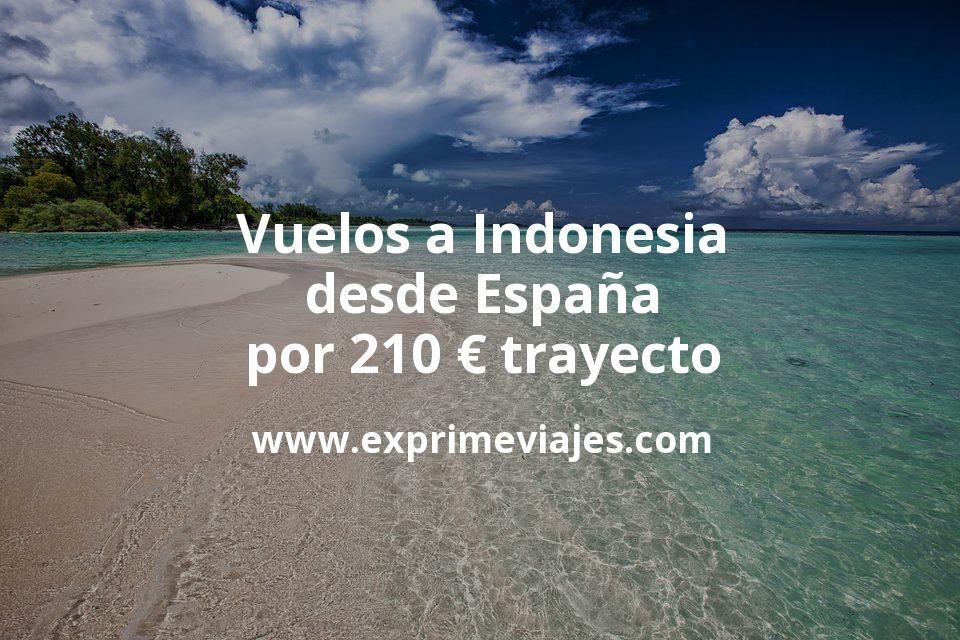 ¡Wow! Vuelos a Indonesia desde España por 210euros trayecto