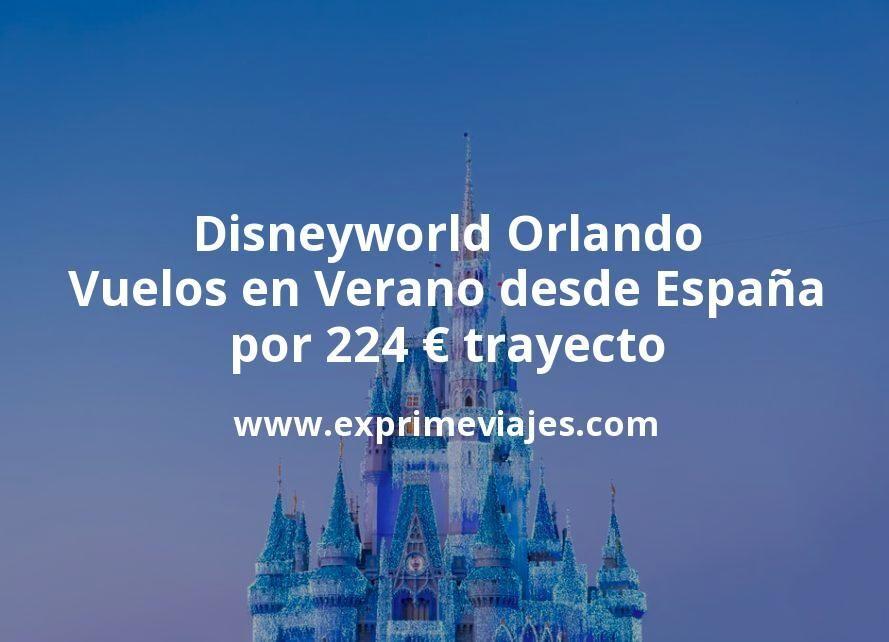 Disneyworld Orlando: Vuelos en Verano desde España por 224euros trayecto