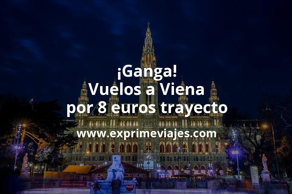 ¡Ganga! Vuelos a Viena por 8euros trayecto