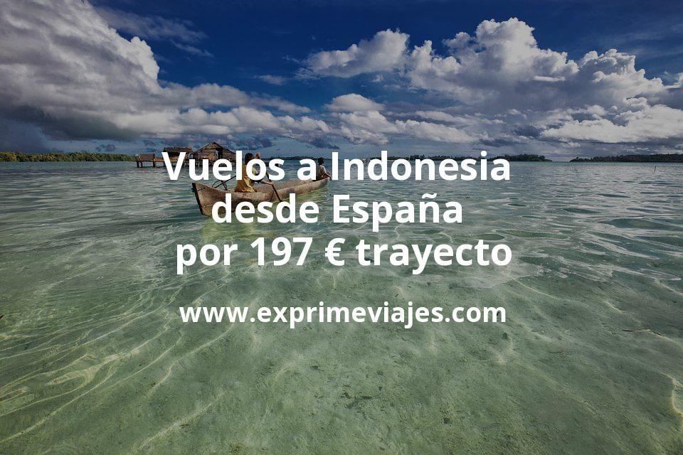 ¡Wow! Vuelos a Indonesia desde España por 197euros trayecto