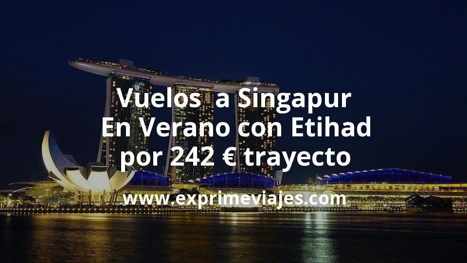 ¡Wow! Vuelos a Singapur en Verano con Etihad por 242€ trayecto