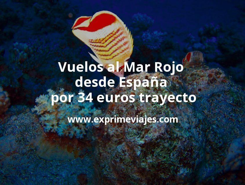 ¡Ganga! Vuelos al Mar Rojo desde España por 34euros trayecto