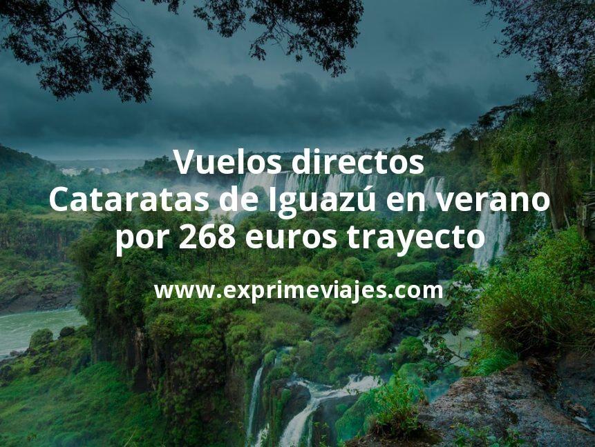 ¡Wow! Vuelos directos a las Cataratas de Iguazú en verano por 268euros trayecto