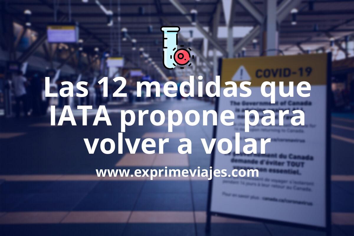 Las propuestas de la Asociación Internacional de Transporte Aéreo para retomar los vuelos