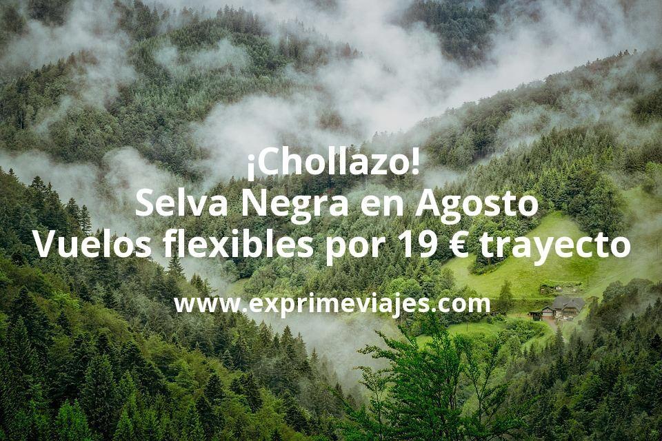 ¡Chollazo! Selva Negra en Agosto: Vuelos flexibles por 19euros trayecto