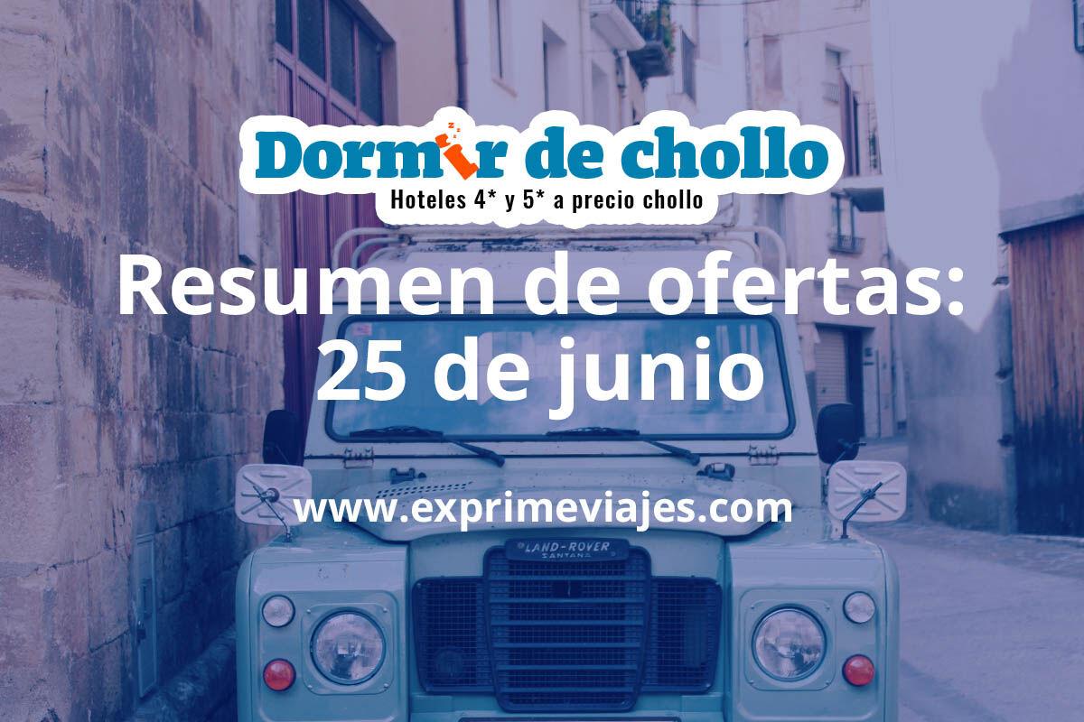 Resumen de ofertas publicadas en Dormir de Chollo el 25 de junio