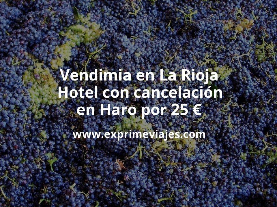 Vendimia en La Rioja: Hotel con cancelación en Haro por 25€ p.p/noche