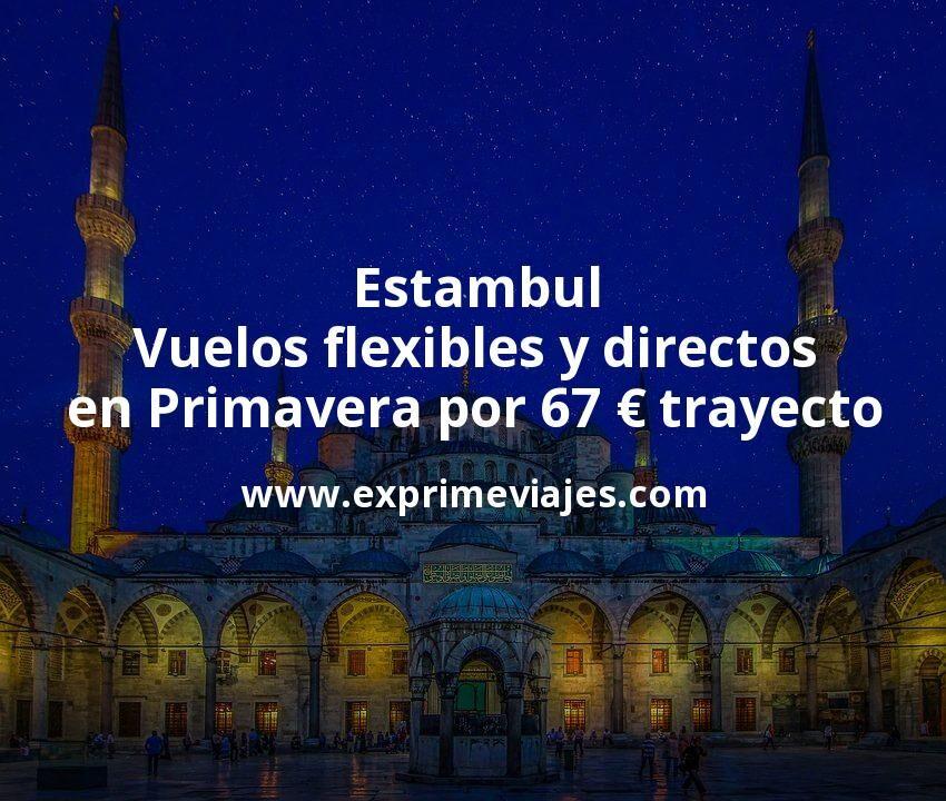¡Chollo! Vuelos flexibles y directos a Estambul en Primavera por 67euros trayecto
