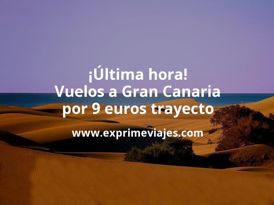 ¡Última Hora! Vuelos a Gran Canaria por 9euros trayecto
