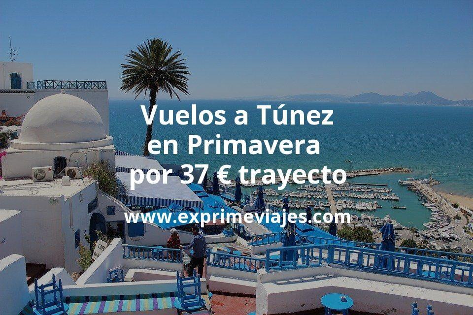¡Wow! Vuelos a Túnez en Primavera por 37euros trayecto
