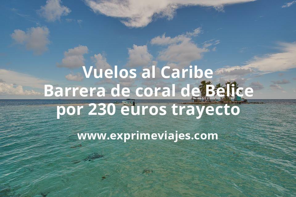 ¡Wow! Caribe: Vuelos a la Barrera de Coral de Belice por 230euros trayecto