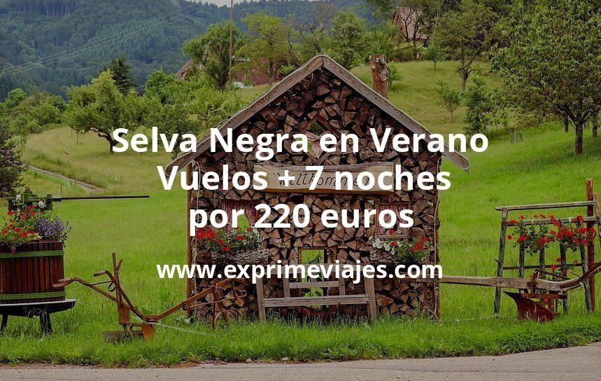 ¡Wow! Selva Negra en Verano: Vuelos + 7 noches por 220euros