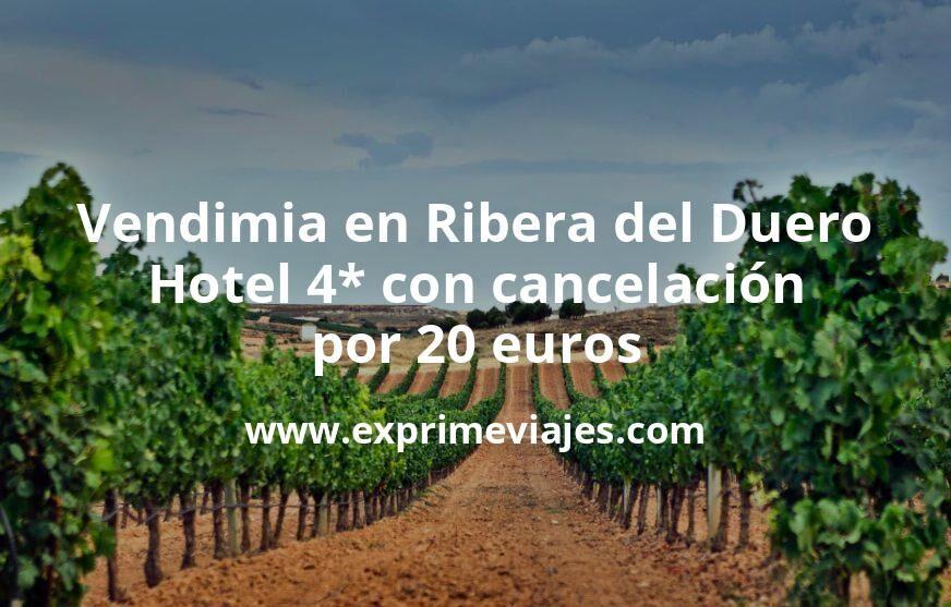 ¡Chollo! Vendimia en Ribera del Duero: Hotel 4* con cancelación por 20€ p.p/noche