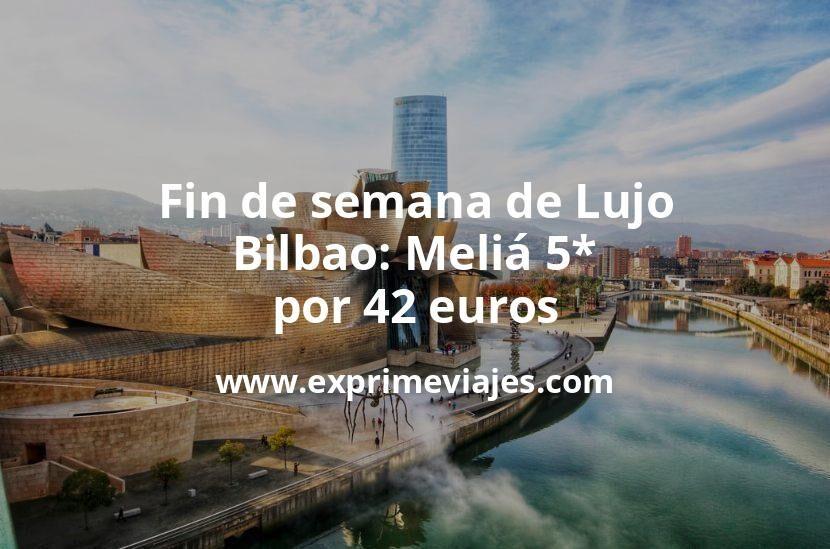 Fin de semana de Lujo en Bilbao: Meliá 5* por 42€ p.p/noche
